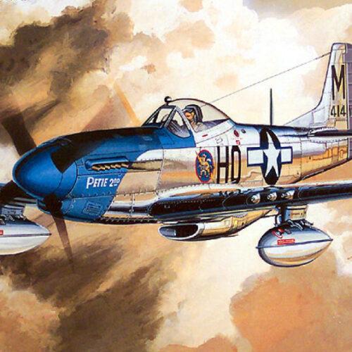 Tamiya P-51D 1/48