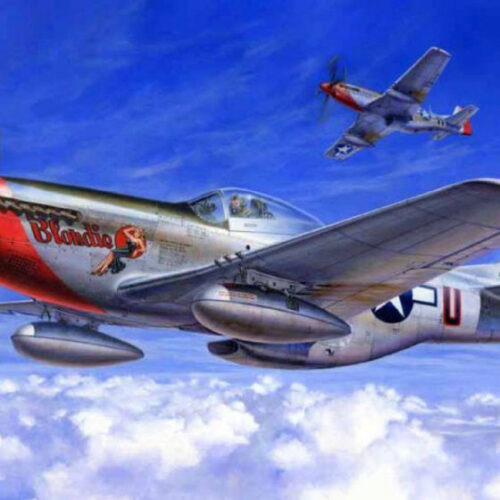 Tamiya 1/32 P-51D