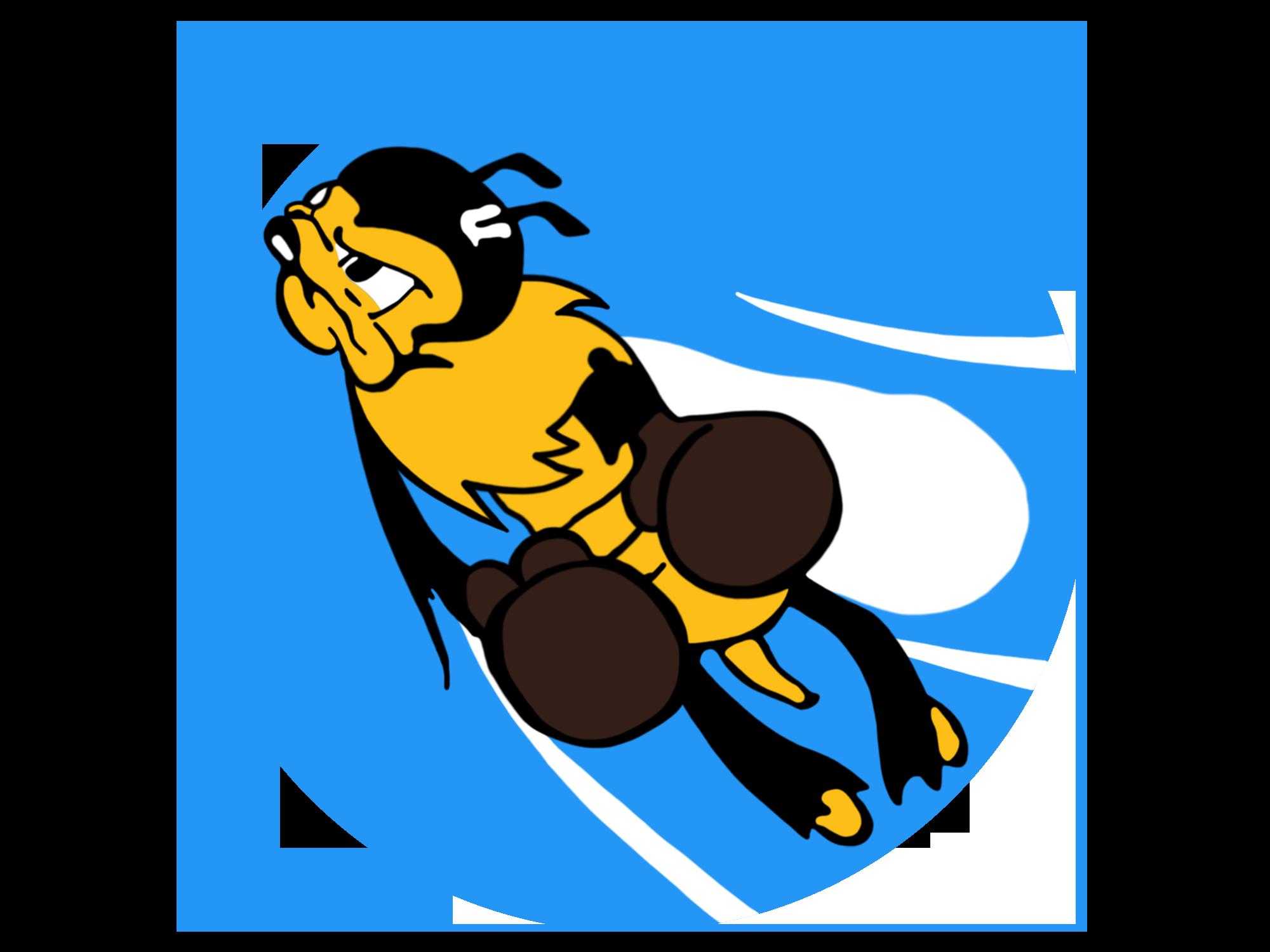 22nd Fighter Squadron Emblem